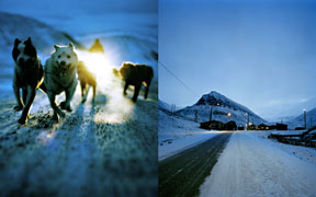 B-sidor cover shots photographed by Jonas Linell at Svalbard